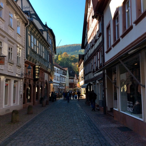 Half-timbered buildings in Miltenberg, 10-19-14