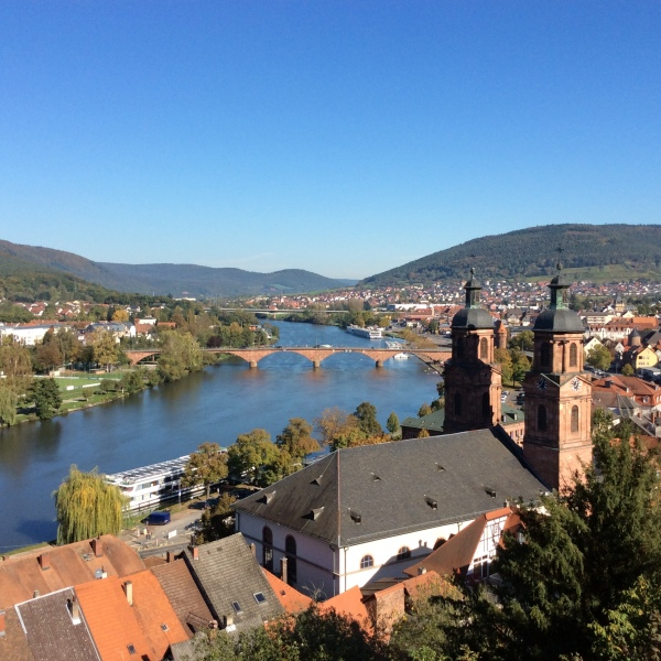 View of Miltenberg from Mildenburg Castle grounds, 10-19-14