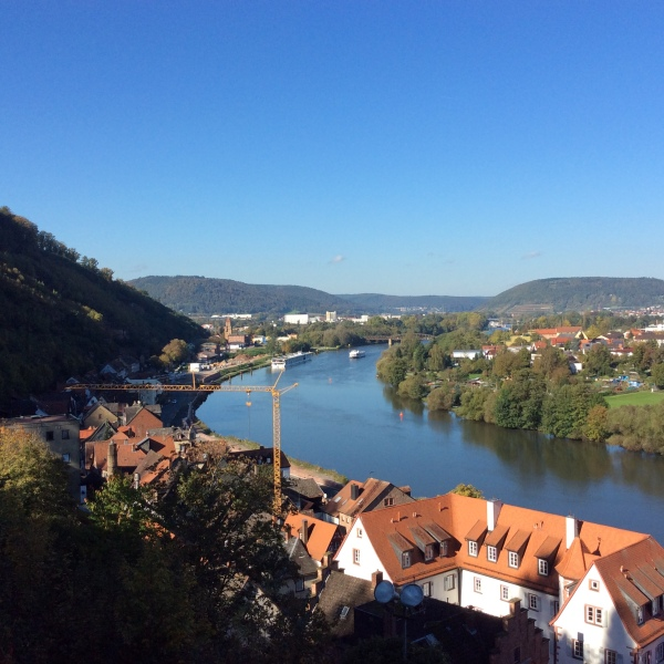 View of the Main River, 10-19-14