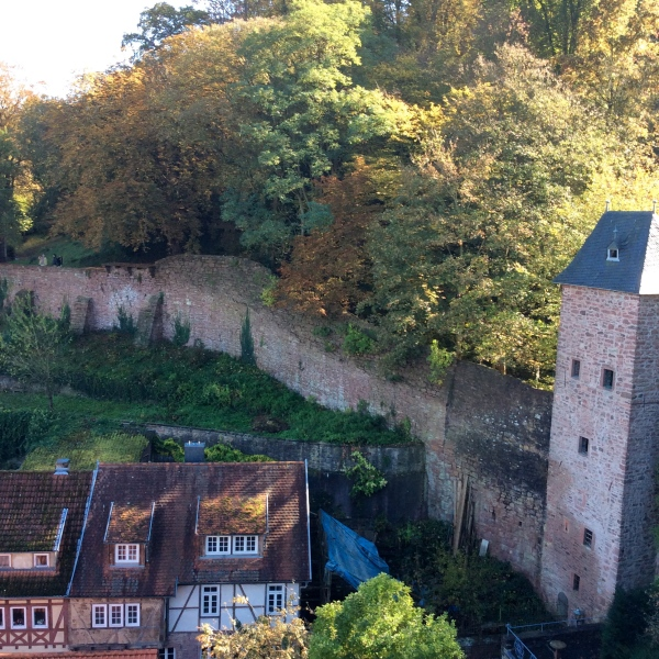 The castle wall, 10-19-14