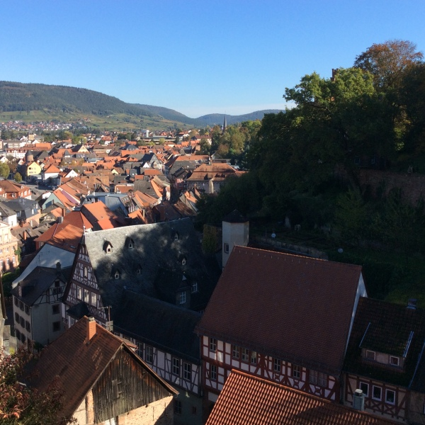 View of Miltenberg rooftops, 10-19-14