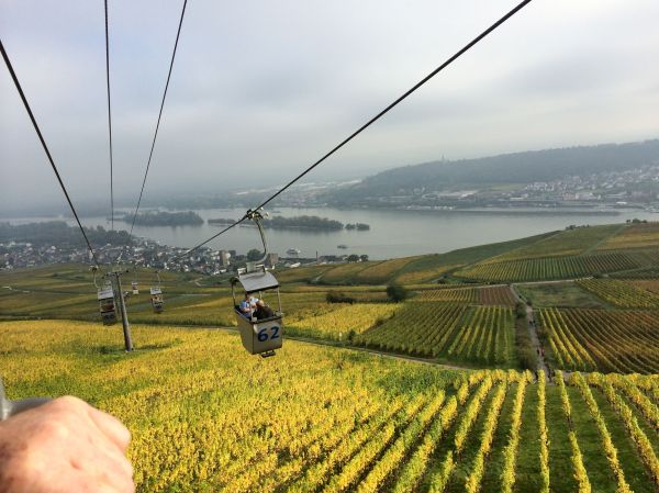 Riding chair-lift above Rüdersheim, 10-18-14 (photo taken by Lois)