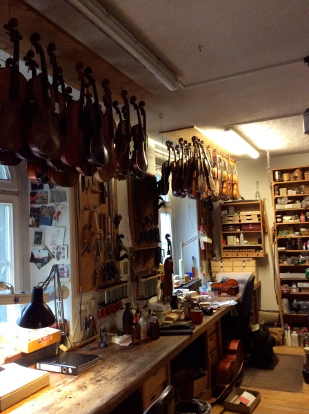 Violins hanging in the workshop, 10-23-14