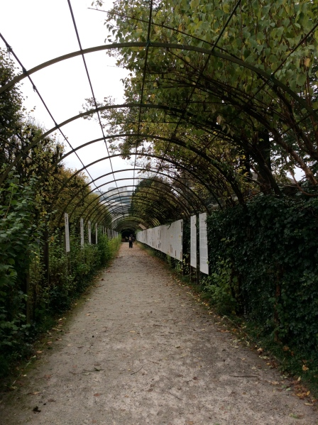 An arbor where some von Trapp children sang in The Sound of Music, 10-24-14