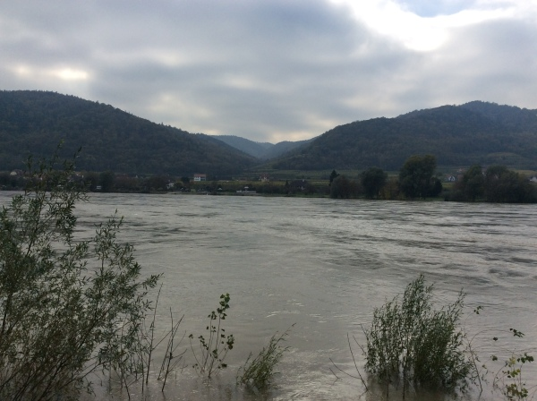 Looking back across the Danube to the other side of the river (10-25-14)