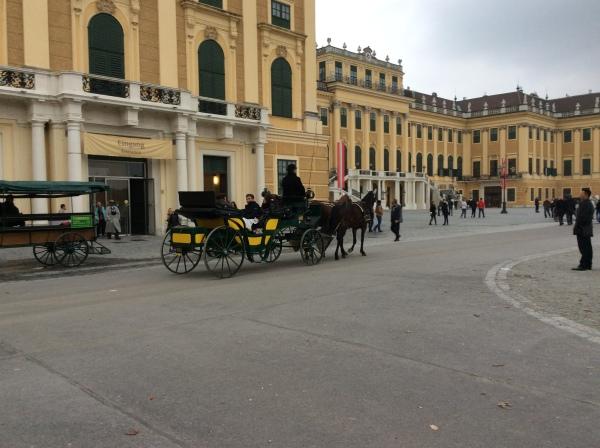Goodby to Schönbrunn!  (10-26-14)