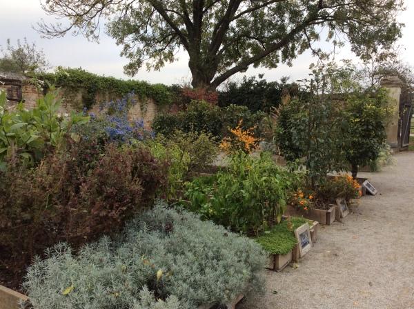 The Herb Garden (10-27-14)
