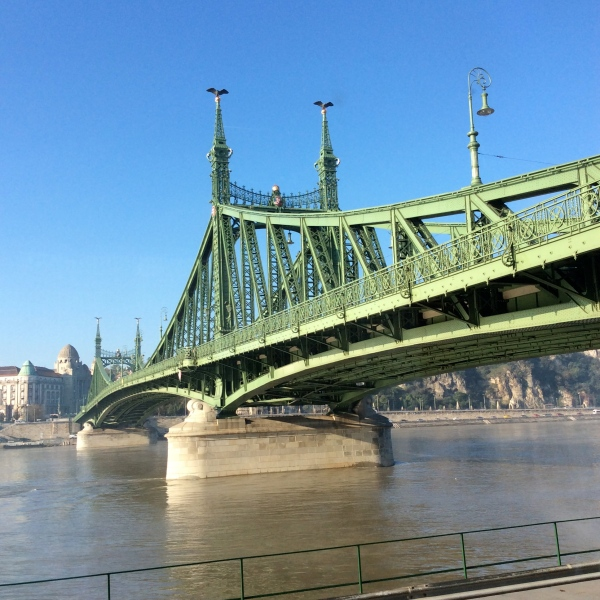 Looking up at Liberty Bridge over the Danube (10-28-14)