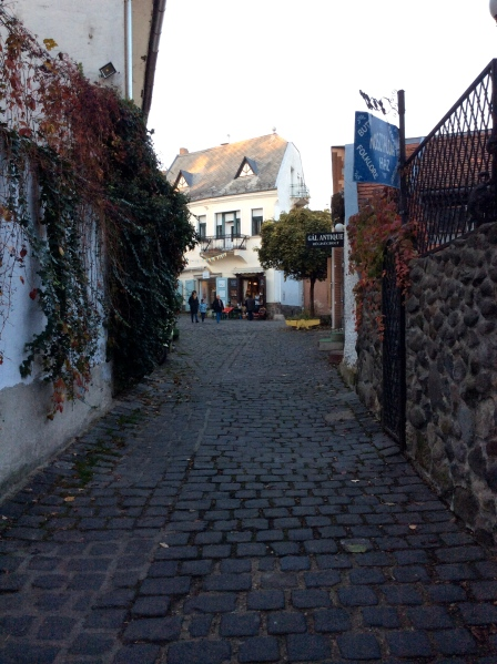 Down the small street to the potter's art gallery (10-28-14)
