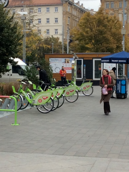 Bikes for rent near the information booth (10-30-14)