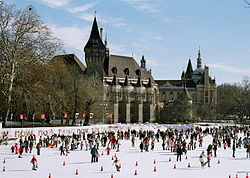 City Park Ice Rink in winter (photo from Wikipedia)
