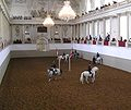 Here's a photo of an arena inside the Spanish Riding School (photo from Wikipedia)